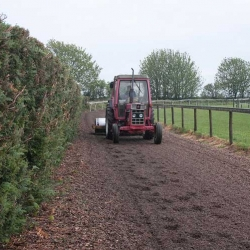 Our gallops are carefully maintained